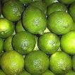 Lime Essential Oil, Distilled